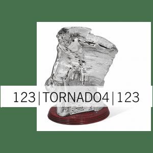 KIPCI_KOŠARKA_TORNADO04 A